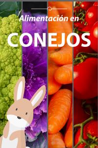 Alimentación en conejos