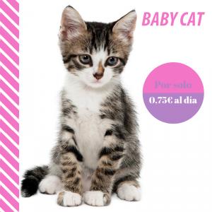 Plan de salud baby cat