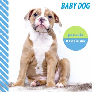 Plan de salud baby dog