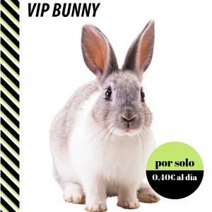 Plan de salud vip bunny